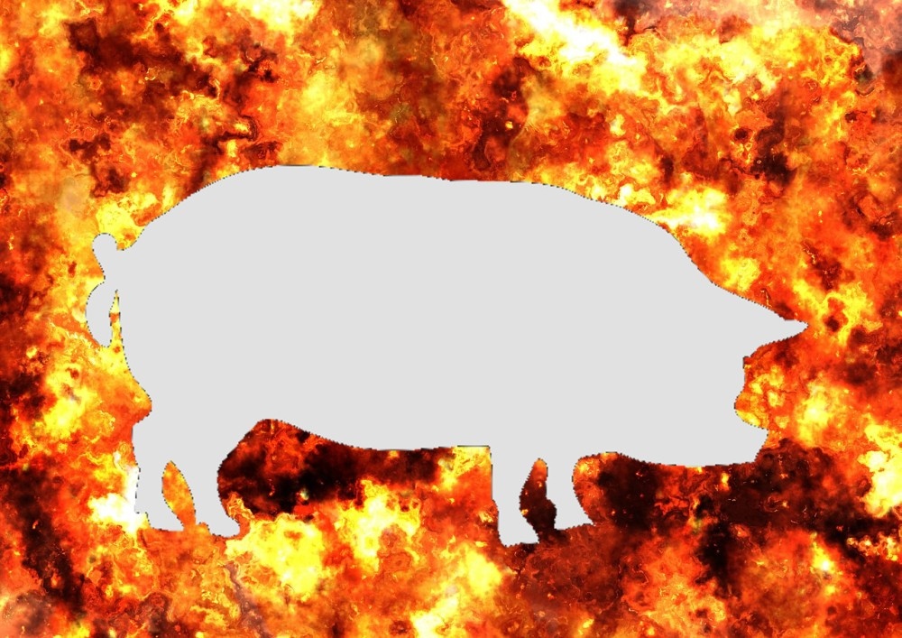 炎の中の豚