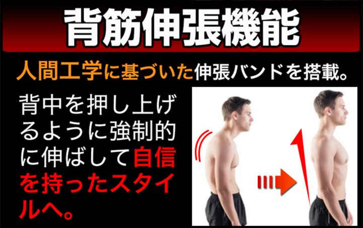背筋を伸ばす機能説明