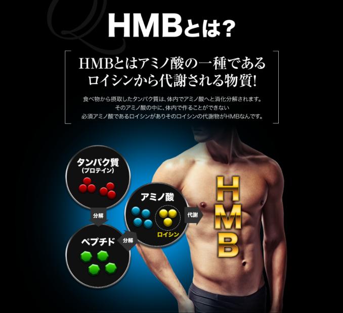 HMBサプリメントの役割