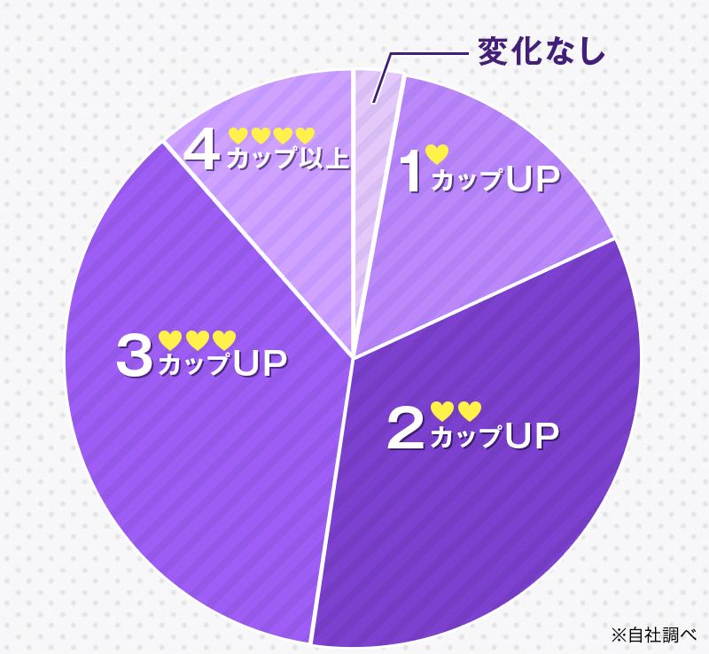 クリスチャン・マリアサイズアップグラフ